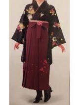 ハカマ、はかま、袴